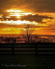 Amazing sunset. Photography via Photography Talk.
