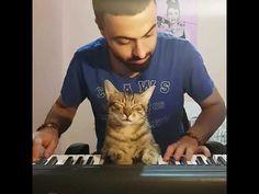 My music lover, sweet child ❤🐈🎹
