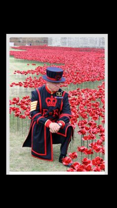 BLOOD SWEPT LANDS  AND SEAS OF RED - Poppies