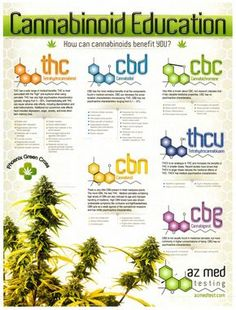 Cannabidiol has been used as for treating epilepsy as it reduces the chance as well as severity of seizures.
