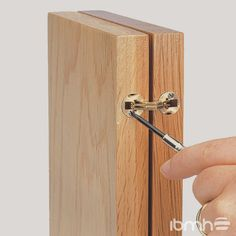 Import Brass Concealed Hinges from China