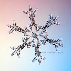 Snowflake. So amazing.