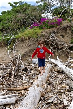 New Zealand's North Island Beaches - Topsy Turvy Tribe New Zealand North, Daily Pictures, City Beach, Island Beach, Family Photographer, Family Travel, Beaches, Blog, Photographs