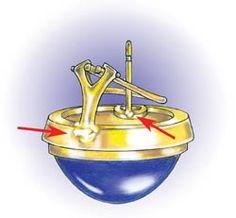 Profesyonel Kuyumcu Arşivi: Omega Küpe Klipler