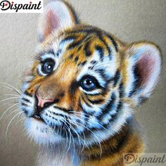 Now bring the painter in you come to life by creating this baby tiger diamond painting. This is a portrait painting. It shows innocent face of tiger cub. Comes with square diamonds to complete your masterpiece. Art Tigre, Animal Drawings, Art Drawings, Pencil Drawings, Tiger Drawing, Tiger Painting, Tiger Artwork, Sketch Drawing, Drawing Ideas