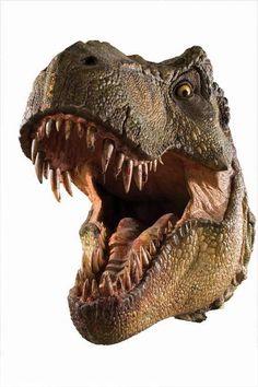 Jurassic Park Raptor, Jurassic Park Film, Jurassic Park World, Dinosaur Cake, Dinosaur Party, Dinosaur Pictures, Jurassic World Dinosaurs, Disney Phone Wallpaper, Prehistoric Animals