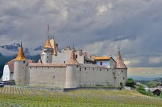 Chateau d'Aigle, Switzerland - null