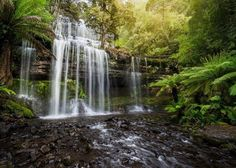 One of the easiest Falls to get to Russell Falls is always a delight and if you are lucky you might even spot a Platypus. Image sent in by Mitch Green https://instagram.com/p/BNxS_nbB32-/