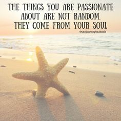 The things you are passionate about are not random. They come from your soul. thedailyquotes.com