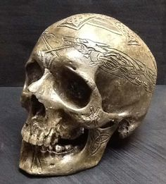 real-human-skulls-for-sale-real-human-skulls-for-sale-pictures-to-pin