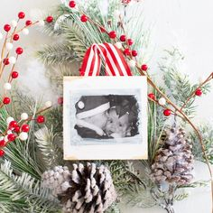 Do you know what your Christmas Tree would love? Some of these Fabulous Fresh DIY Farmhouse Christmas Ornaments! All quick… easy and Farmtastic! Twig Christmas Tree, Farmhouse Christmas Ornaments, Diy Christmas Lights, Dollar Store Christmas, Christmas Signs, Handmade Christmas, Joanna Gaines, Picture Ornaments, Mason Jar Diy
