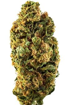 Joint Cannabis Dispensary is a Fast, Friendly, Discrete, Reliable cannabis online shop which ships top grade bud around the world. Buy marijuana Online USA and Buy marijuana online UK or general Buying marijuana online has been distinguished by the superior quality of our products and by our overall focus on wellness and wide variety of strains for recreational use. Go to .... https://www.jointcannabisdispensary.com Text or call +1(408)909-1859
