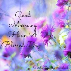 Good morning!!! Wishing you all a beautifully blessed day!!!