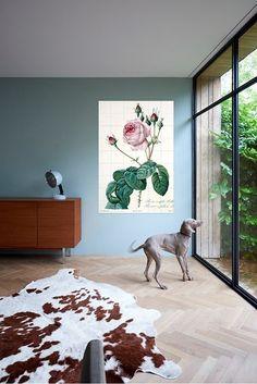 Maak van jouw muur een tropisch feestje met behulp van de mooie Natural History Museum prenten. Of je nu kiest voor een IXXI van de kleurrijke flora & fauna of liever gaat voor een modern beeld uit de NHM-collectie; jouw interieur zal zéker een stijlvolle twist krijgen. En het leuke is; de vorm en het formaat bepaal je helemaal zelf!
