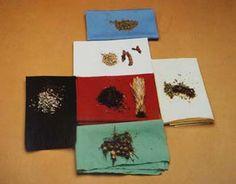 Image result for tobacco indigenous