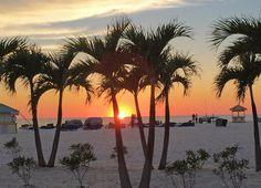 Familienurlaub: Florida mit Kindern erleben