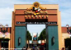 Disney Park Confessions