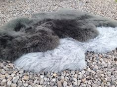 Grey/Gray/Silver British sheepskin rug or throw