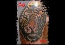 Tiger 111