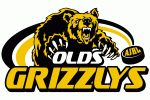 Olds Grizzlys (Olds, Alberta, Canada) Olds & District Sports Complex # Hockey Logos, Hockey Teams, Stomach Workout For Beginners, Canada Hockey, Heat Transfer, Nhl, Sports Complex, Alberta Canada, Workouts
