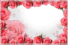 Pink PNG Roses Frame