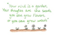 . Words Of Wisdom Quotes, Sign Quotes, Wise Words, Me Quotes, Planting Flowers From Seeds, Growing Flowers, Flower Seeds, Happy Minds, Quote Of The Week