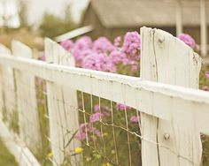 Farmhouse white (pallet repurpose with stapled wire?) fencing to keep critters out garden area