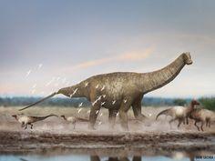 "paleoart: "" Austroposeidon magnificus, the biggest brazilian dinosaur found so far. See more at Earth Archives. """