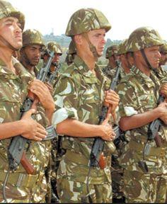 Algeria Algerian Army ranks military combat field uniforms dress grades uniformes combat algerie | Algeria Algerian army combat ranks uniforms UK FR | Algerie armee algerienne equipement militaire FR