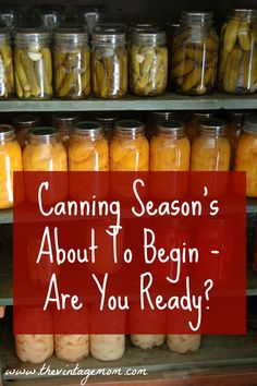 Canning Season's About To Begin - Here's What You Need To Know - The Vintage Mom