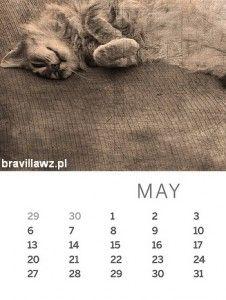 Treść kalendarza - http://bravillawz.pl/tresc-kalendarza/