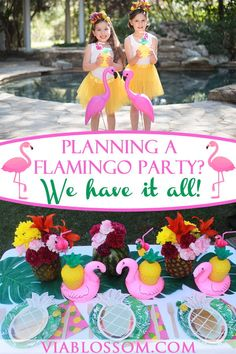 You will love our Flamingo party ideas and decorations! If you are planning a Flamingo Birthday Party, you need to check out our Flamingo party supplies! 10th Birthday Parties, Birthday Party Decorations, Party Themes, Party Ideas, 5th Birthday, Flamingo Party Supplies, Luau Party Supplies, Aloha Party, Flamingo Birthday