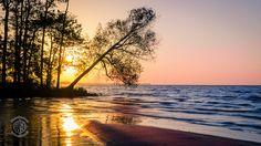 Zalew Szczeciński - zachód słońca i drzewo inspiracji