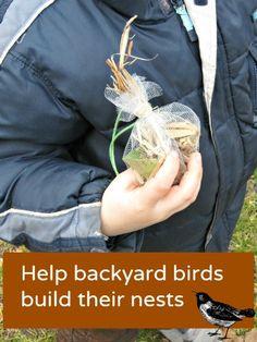 Make a DIY bird nesting ball - great springtime craft to teach about nature and birds.