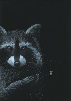 Prints of Nikki McIvor& most popular art prints Fox Home, Grey Fox, Popular Art, Fox Art, My Arts, Art Prints, Superhero, Artist, Nature