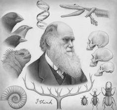 12 de Febrero. Cumpleaños de Charles Darwin.
