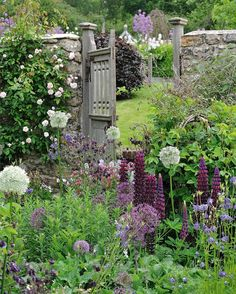 South Wood Farm, Devon: Soft, rich colours and controlled abundance in the front courtyard from foxgloves, lupins, artemisia and roses.