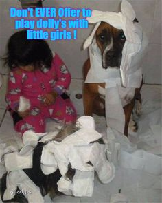 22 Funny Animal Pics for Your Sunday on Love Cute Animals Funny Animal Pictures, Cute Funny Animals, Funny Cute, Funny Dogs, Cute Dogs, Animal Pics, Hilarious, Animal Quotes, Animal Memes