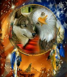 Native American Pictures, Native American Artwork, American Indian Art, Fantasy Wolf, Fantasy Art, Native American Spirituality, Dream Catcher Art, Wolf Spirit Animal, Dream Catcher Native American