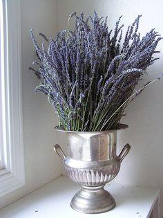 lavender  http://greenjewls.blogspot.com/2006/07/thrift-thursday-and-new-inspirations.html