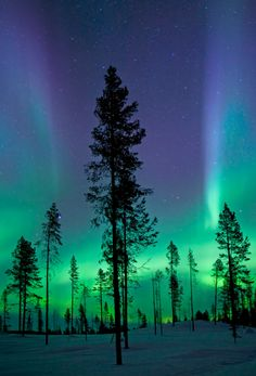 kiruna aurora. Have always wanted to see the Northern Lights!!!