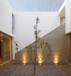 spotlight up lighters | garden lighting || La Isla House / Llosa Cortegana Architects