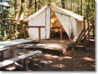 Exterior view of Dosewallips platform tent with wooden deck and picnic table outside. Trees surround the tent.
