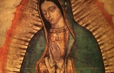 The Miraculous relic image of Our Lady of Guadalupe, Protectress of the Unborn, will be on display from Saturday 24 October to Thursday 29 October 2015 at St Andrew's Metropolitan Cathedral, 196 Clyde Street, Glasgow. Thousands of pilgrims are expected during the visit. The custodians for this event are the Knights of St Columba. On Saturday 24 October there will be Mass at 5.15pm and Service of Reception at 6.30pm. On Sunday the Cathedral will be open from 9.30am until 6.30pm and during…