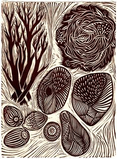 Gathering - Linocut Relief Print - acorn / branch / seed / stone pod / shell / nest / brown / nature. $15.00, via Etsy.