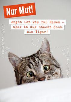 Nur Mut! - Postkarten - Grafik Werkstatt Bielefeld