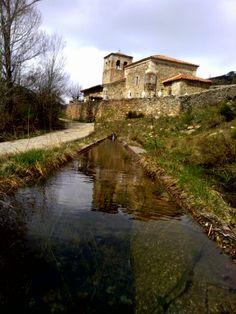 Triollo, Palencia. España.
