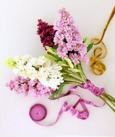 My lilacs and citrusandorange's styling! :)