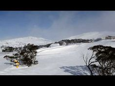 Powder Day in Perisher