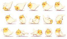 Birdy Behavior